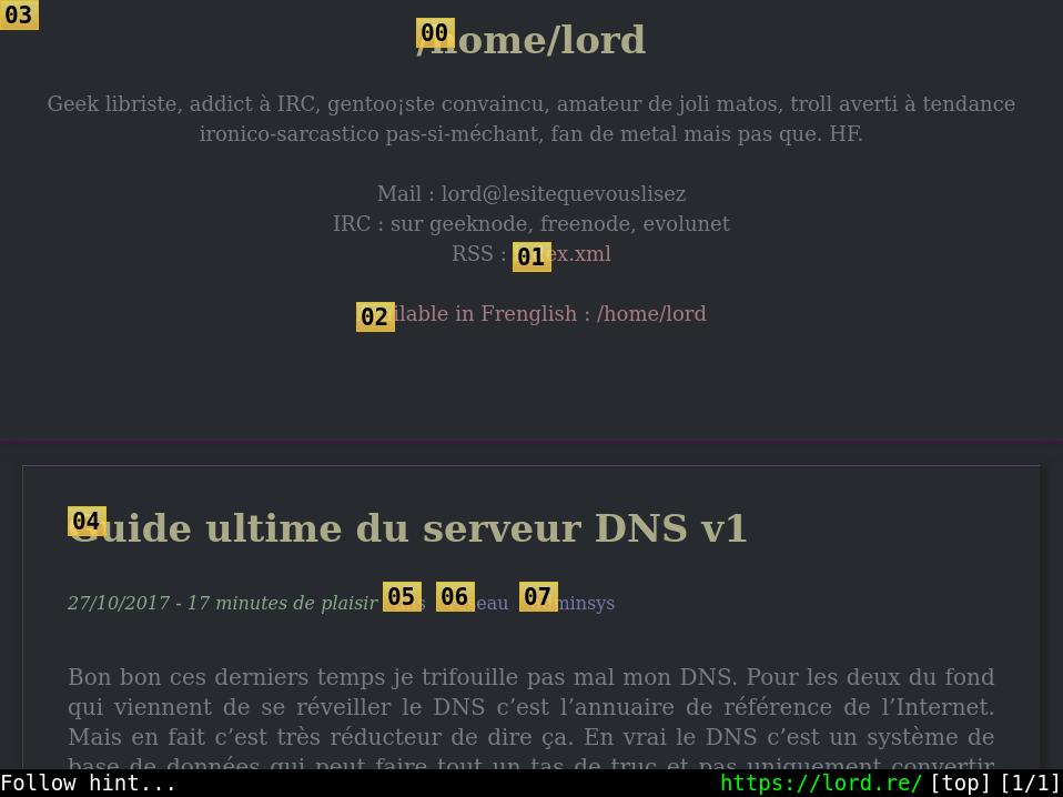 qutebrowser screenshot showing the hint mode