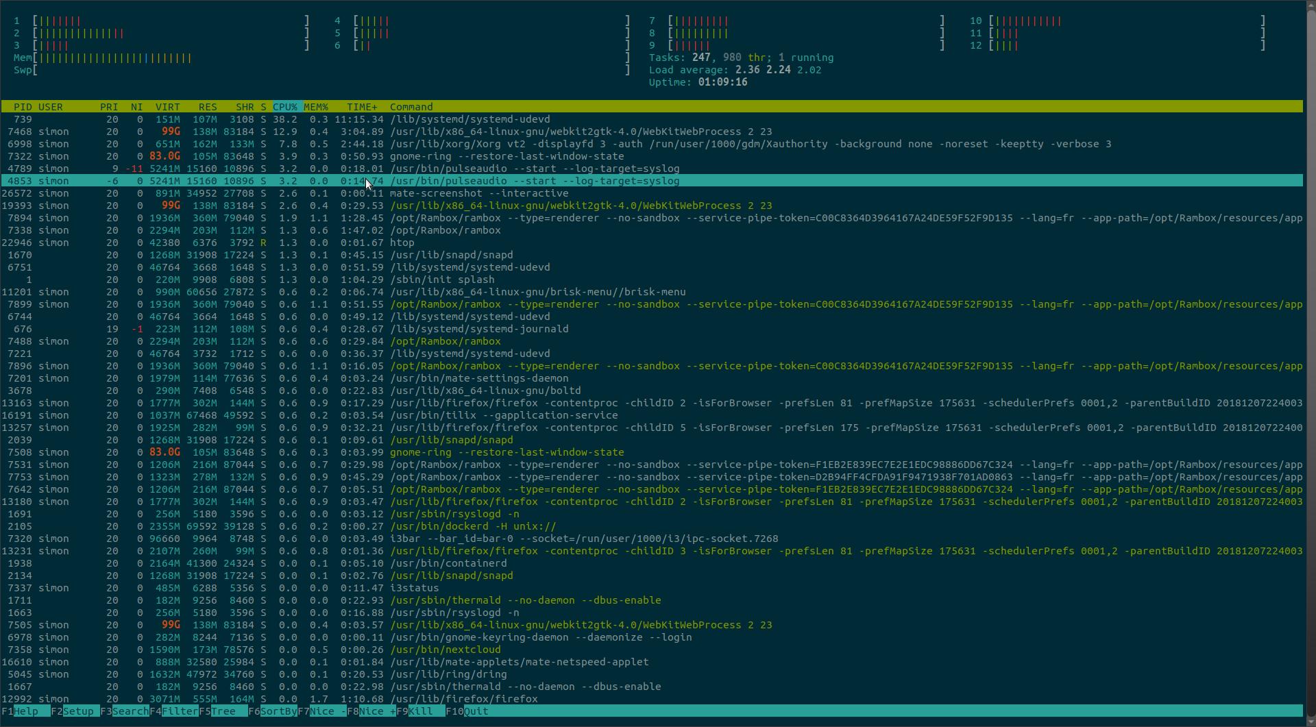 le Htop d'ubuntu est interminable avec 247 tâches tournant.